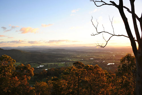 Tempting Mount Tamborine