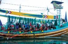 Bali - Negara Buffalo Races