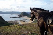 Horse-Riding-Lombok-Garuda-Mag-Apr14-1LR