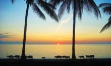 Lombok-Tugu-Romance-MY-LOMBOK--9
